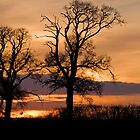 Sunset in rural Bedfordshire by fotdmike