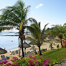 Le Canonnier Mauritius by JandeBeer