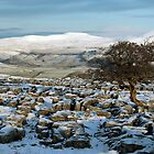 Ingleborough From Langcliffe by SteveMG