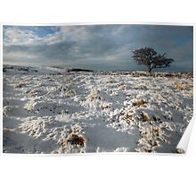 A Dales Winter Landscape Poster