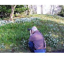 Hodsock Priory snowdrops Photographic Print