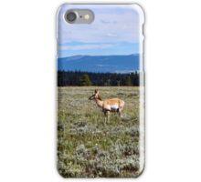 Pronghorn Antelope iPhone Case/Skin