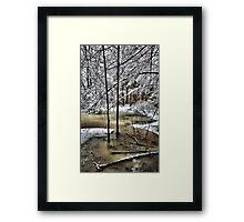 Late February Snowfall - A Hint of Color Framed Print