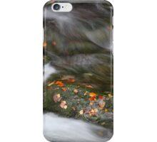 It's Autumn! iPhone Case/Skin