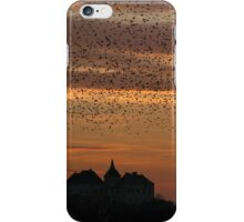 Silhouettes at sunset iPhone Case/Skin