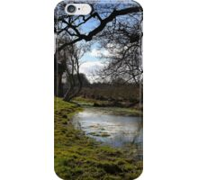 Dappled reflections iPhone Case/Skin