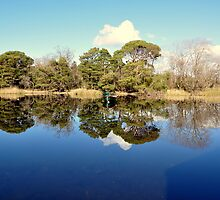 Still Lake Reflection Muckross Killarney by amuigh-anseo