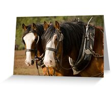 Clydesdale Brothers Greeting Card