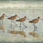 Ocean conga ballet by Maria Ismanah Schulze-Vorberg