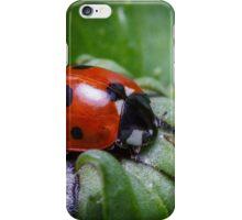 Ladybird sleeping inside a flower bud iPhone Case/Skin