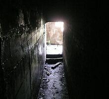 In the Bunker by Tmac02892