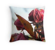 Spring Welcome Throw Pillow