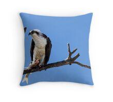 Osprey with Breakfast Throw Pillow