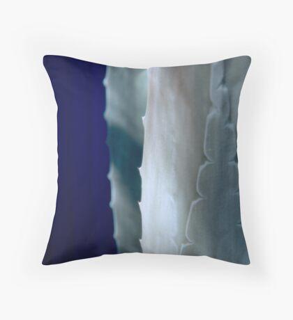 Agave-Barrio Viejo-Tucson Throw Pillow