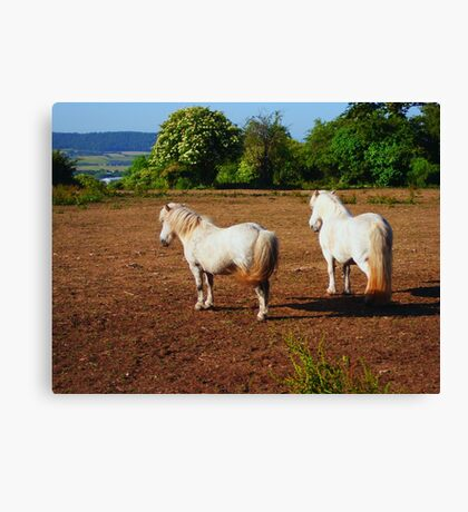 Just Me and You Canvas Print