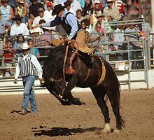 Bronco Rider, Tucson Rodeo by Desertwayfarer