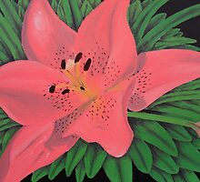 Painted Lilies Collection #6 by Laura Dhir