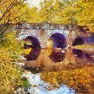 Bridge at Bowman's Hill Wild Flower Preserve..... by DaveHrusecky