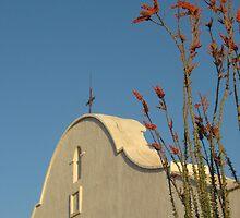 Mission San Xavier del Bac, AZ by Desertwayfarer