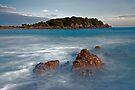 The Island by Michael Treloar