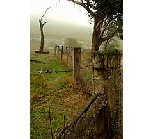 Wet Damp Cowbaw Morning, Macendon Ranges Photographic Print