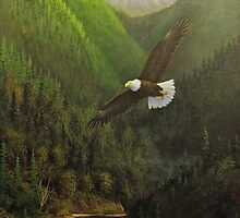 Where Eagles Fly by Rich Summers