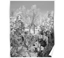 Snowy Scenery 2 Poster