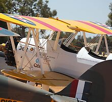 Stearman in a Pack by Stephen Horton