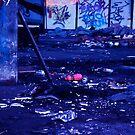 The Floor by Paul Van Lierop