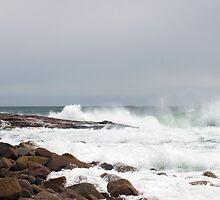 On the Rocks by Monica M. Scanlan