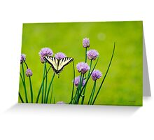 Sugar and Spice Butterfly Art Greeting Card