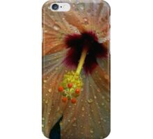 Hybiscus after the rain iPhone Case/Skin