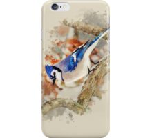 Bluejay Watercolor Art iPhone Case/Skin