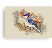 Bluejay Watercolor Art Canvas Print