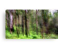 Rainforest Lines Canvas Print
