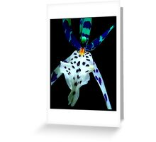 Ray Bans - A New Perspective on Orchid Life Greeting Card
