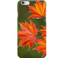 Red Maple Leaves Abstract iPhone Case/Skin