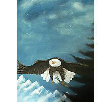 eagle Photographic Print