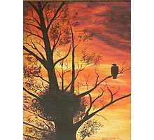 eagle by sunset Photographic Print