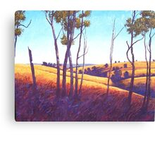 Near Nanango Canvas Print