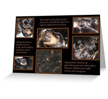 Rottweiler Temperament - Puppy Collage Greeting Card