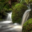 Cold Waters by DavidsArt
