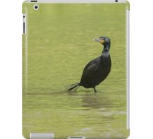 Yoga Stance iPad Case/Skin