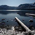 Fallen Leaf Lake - Tahoe 1 by MichaelBr