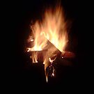 fire by annierose
