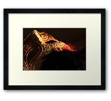Mask of Gold Framed Print