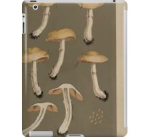 Illustrations of British Fungi by Mordecai Cubitt Cook 1891 V5 0475 CORTINARIUS  MYXACIUM  VIBRATILIS iPad Case/Skin