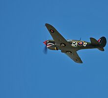 Kittyhawk fighter, WW2 by bazcelt