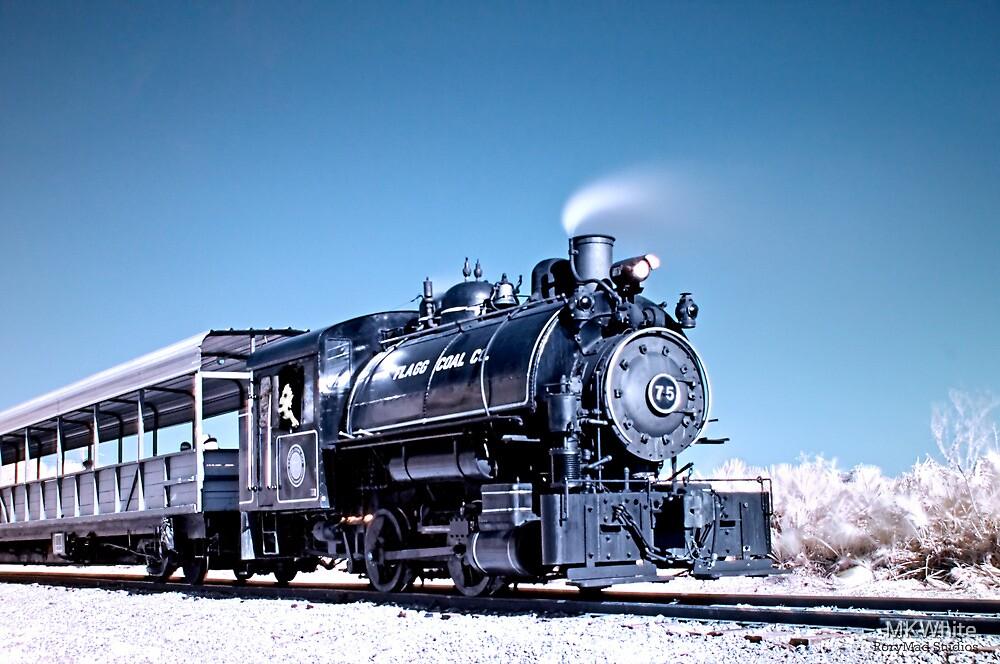Flagg Coal Steam Engine HDR/IR by MKWhite