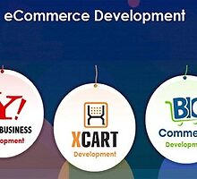 Ecommerce Website Builder by omsftwre